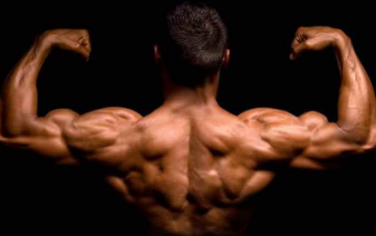 Know In And Out Of Steroids and the Life Cycle