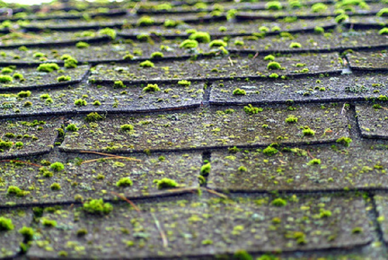 Whats Your Tag Blog How To Tell If You Need Roof Repair